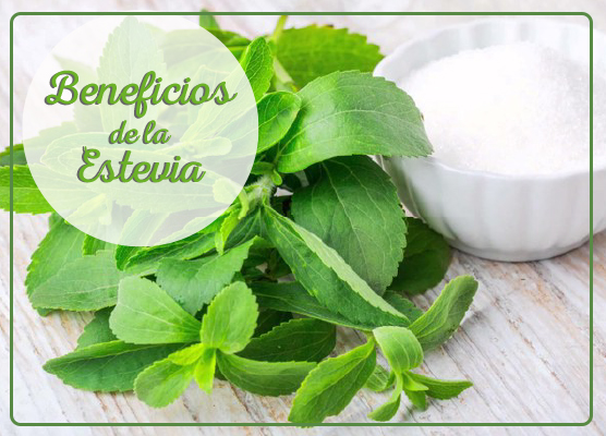 Beneficios de la Estevia